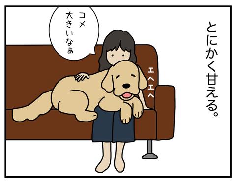 赤ちゃん02