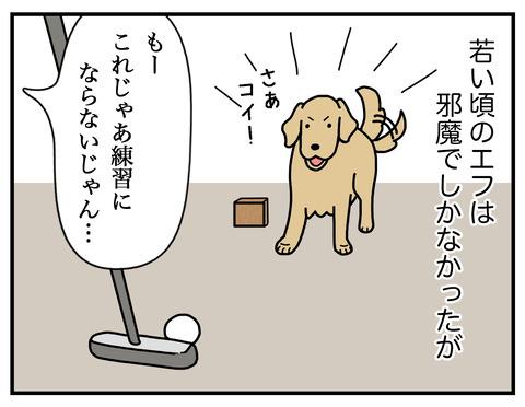 パターの練習03