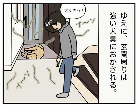 玄関犬臭02