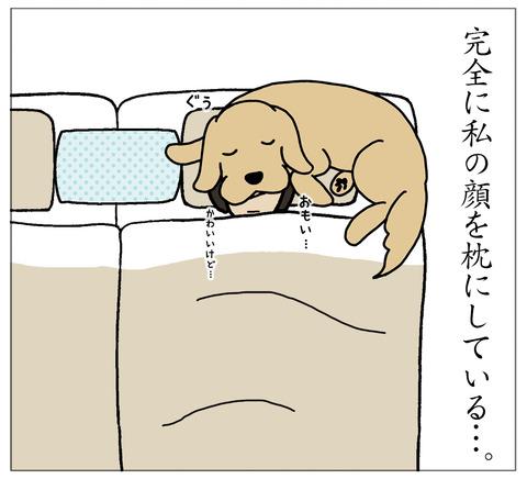 まくらに寝る06