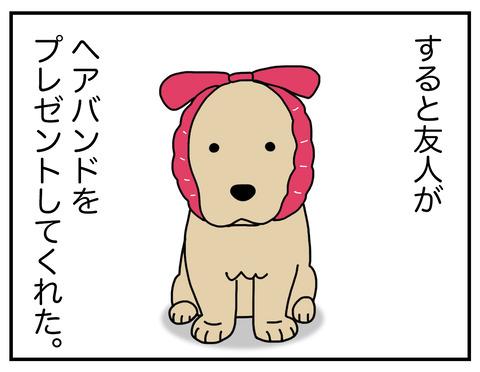 耳の長い犬06