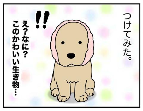 耳の長い犬04