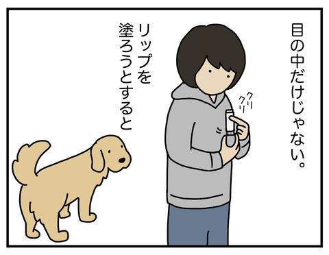 続忍び込む毛02