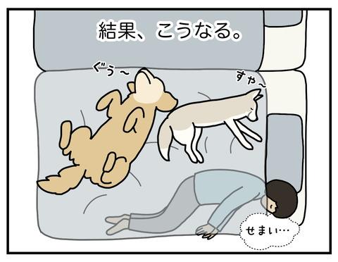 寝場所04