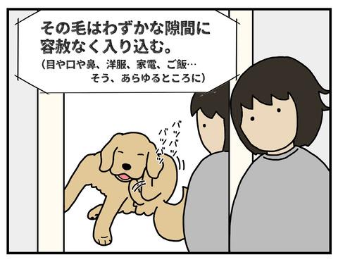 忍び込む毛05