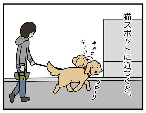 野生の本能03