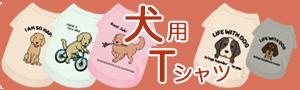 ブログバナー_犬小