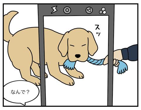 真面目犬04