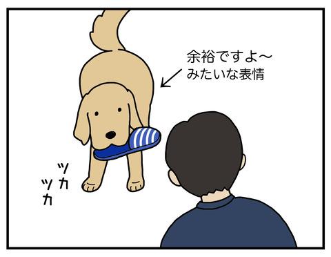 得意げな犬06