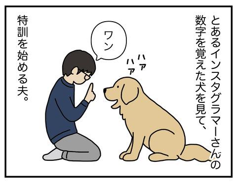 算数犬01