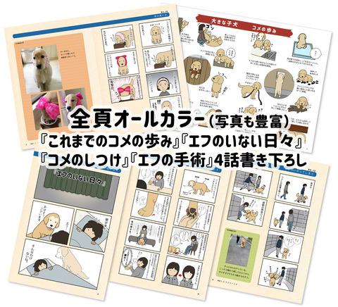 blog宣伝02のコピー