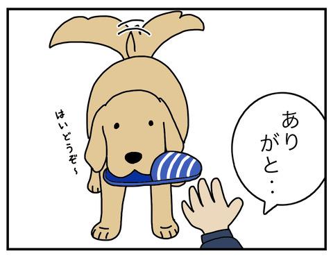 得意げな犬03