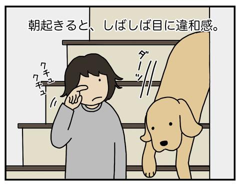 忍び込む毛01