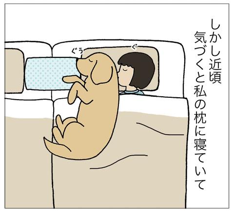 まくらに寝る02