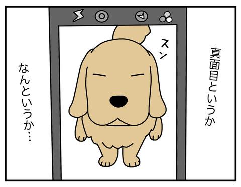 真面目犬07
