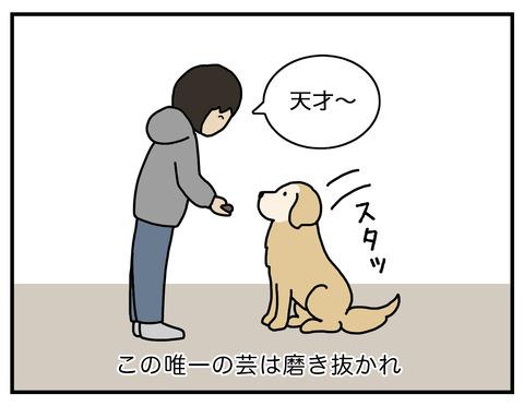 天才エフ磨き抜かれた技04