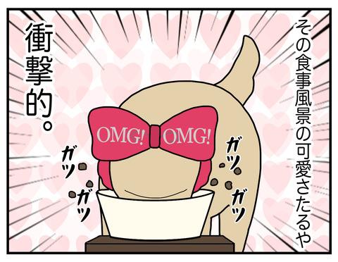 耳の長い犬07