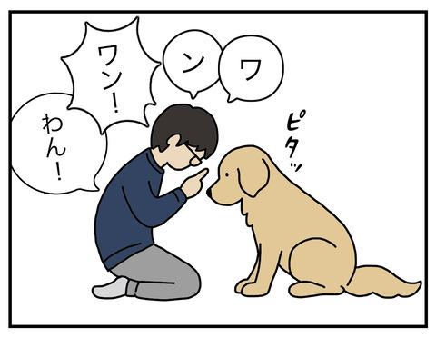 算数犬02
