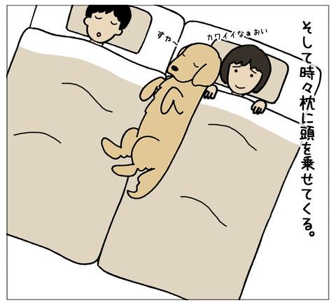 寝相の違い06