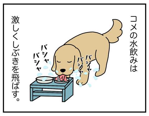 おいしい水01