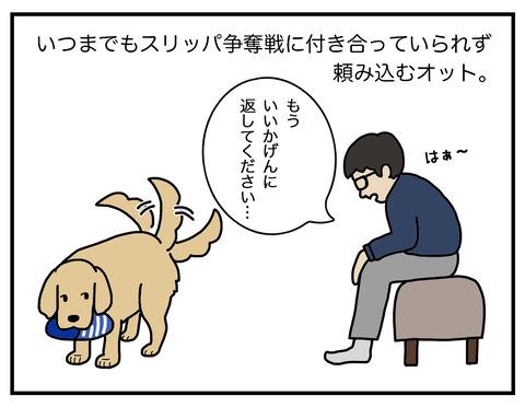 得意げな犬01