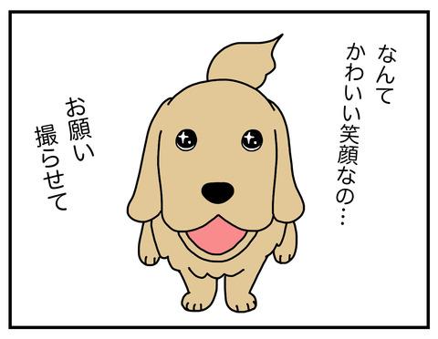 真面目犬06