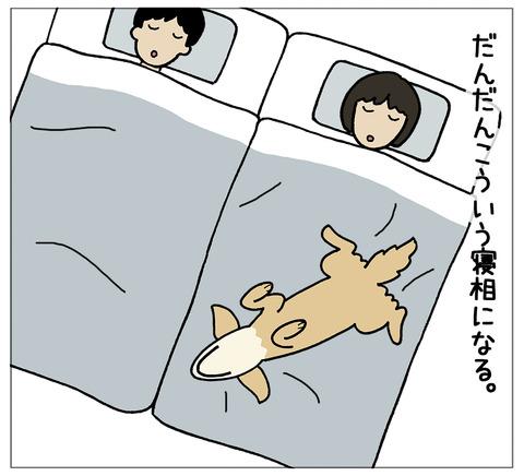 寝相の違い02