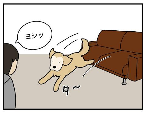 天才エフ磨き抜かれた技03
