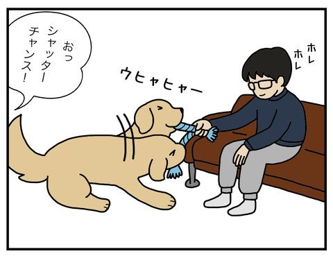 真面目犬03
