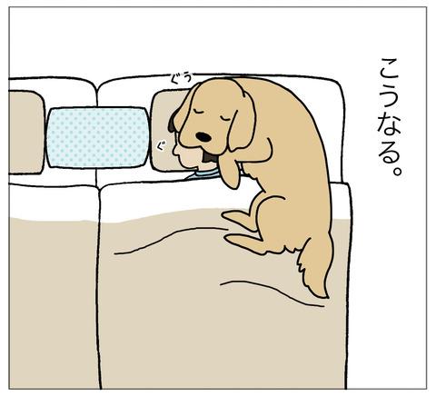 まくらに寝る05