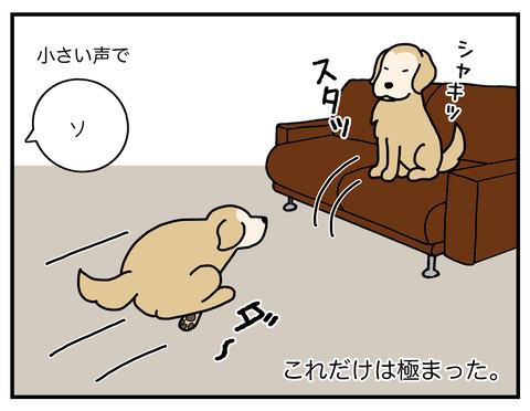 天才エフ磨き抜かれた技05