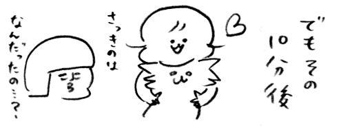 トンちゃん怒る3
