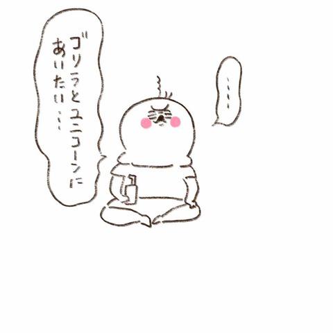IMG_6663
