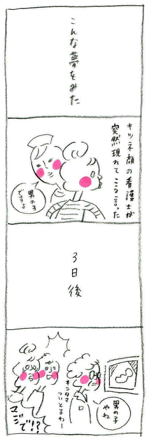 【妊娠日記20】夢