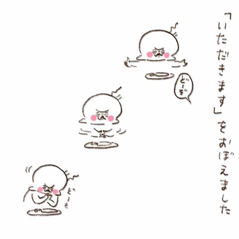 IMG_4284