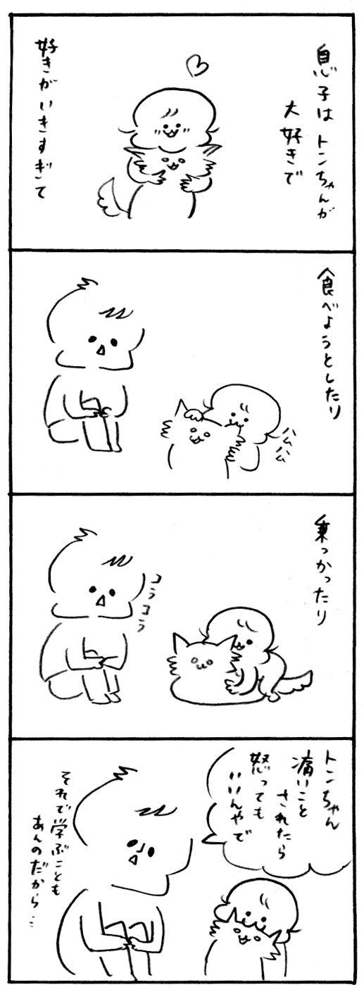 トンちゃん怒る1