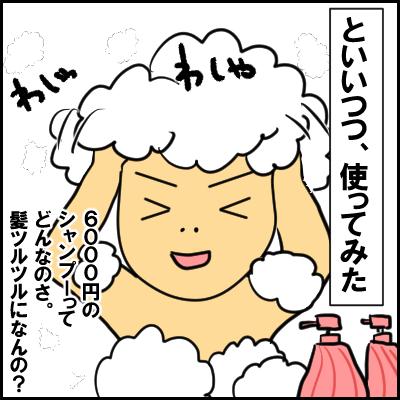 syanpu5
