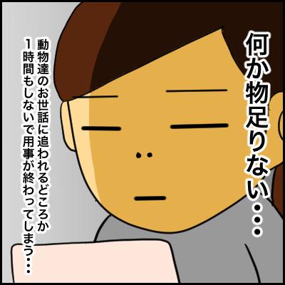 B9D610CF-3F6C-41C0-840C-0FB19CE4741A
