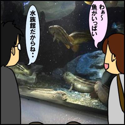 suizoku1