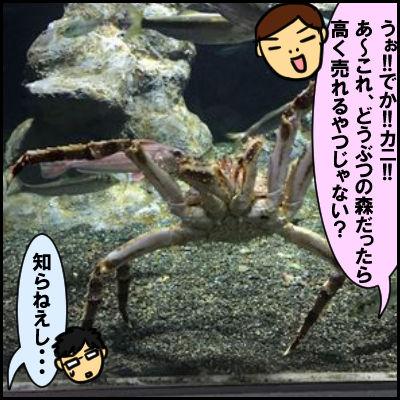 suizoku5
