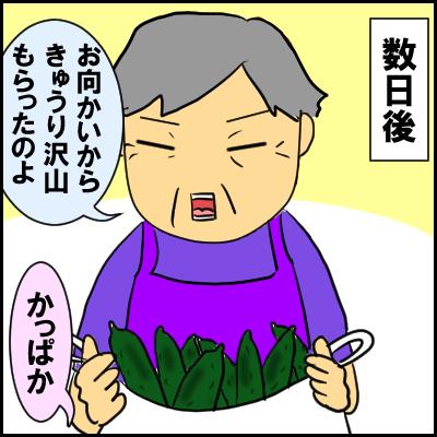 kyuri6