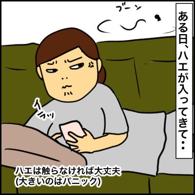 59B0AB45-9A50-45B6-B7D2-9EA7CA2BDF51
