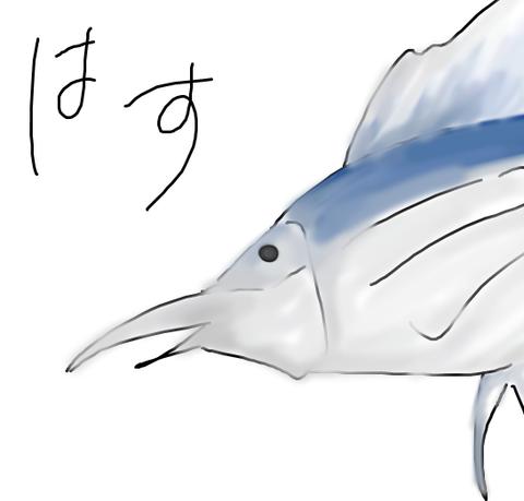 kajiki