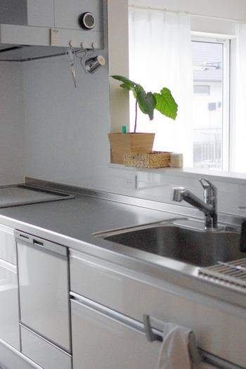 シンプル キッチン