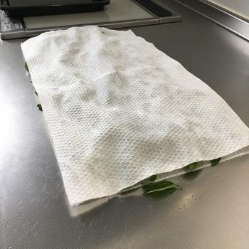 乾燥バジルを作った