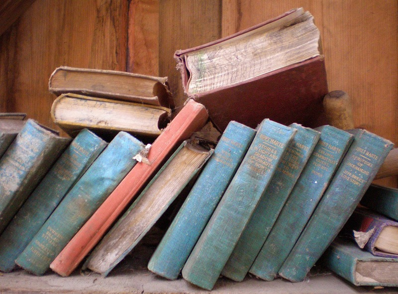 books-785894_1920