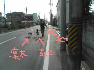 b1cb71c9.jpg