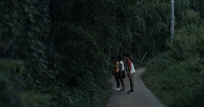 ホタルの道 夏 ②
