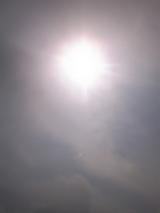 sun lignt