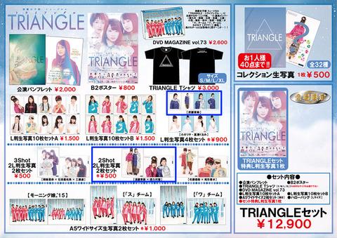 20150618_triangle1